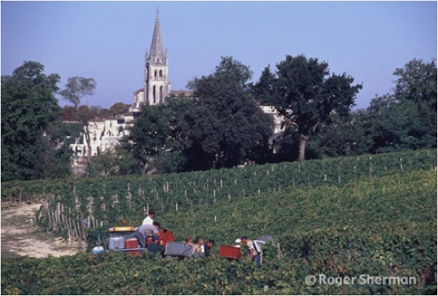 Harvesting in Pavie